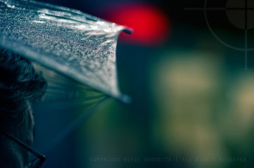 80 Rain Photography Taken By Talented Photographers