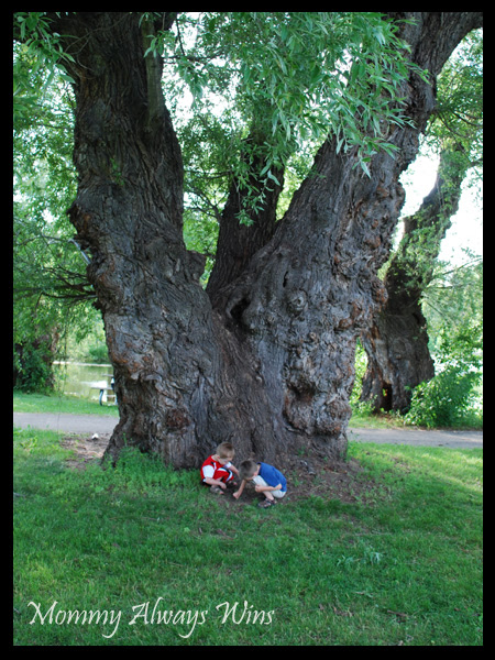 Nick & Will posing by the big tree - 2009