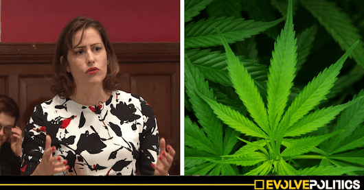 Blatant hypocrisy as Tory Drugs Minister opposes regulation while her husband grows acres of CANNABIS under a government licence | Evolve Politics