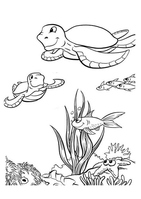 print coloring image art draw sea animalscreatures