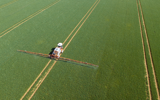 Pesticides on Our Plates: Is Our Food Safe to Eat?