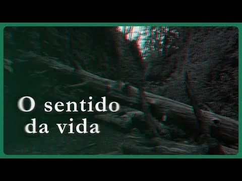 """""""O Sentido da Vida"""" Psicológo Renato Belin Castellucci"""