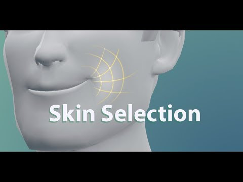 Skin Selection
