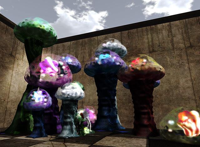 mushroomgardener III