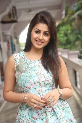 Nikki Galrani Latest Photos - 25 of 35
