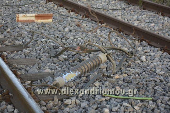 alexandriamou_treno_adentro2027