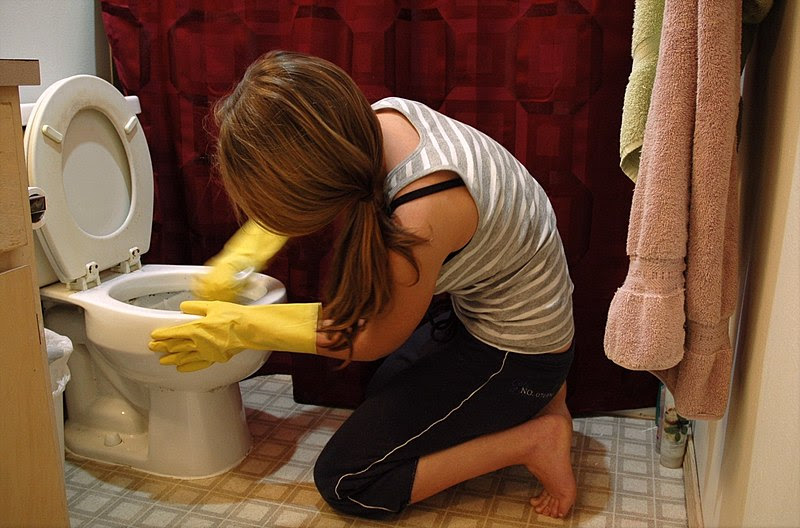 File:Woman cleaning toilets.jpg
