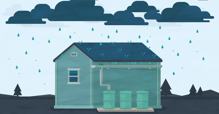 Why Everyone Should Care About Rainwater Harvesting Infographic