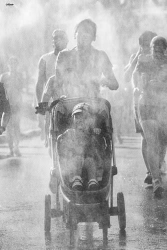 Trotando en familia by Alejandro Bonilla