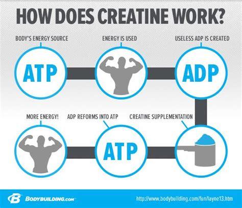 creatine       works