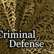 White Collar Criminal Defense | Lanigan & Lanigan, P.L