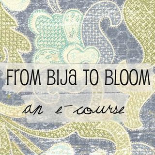 emily perry studios from bija to bloom