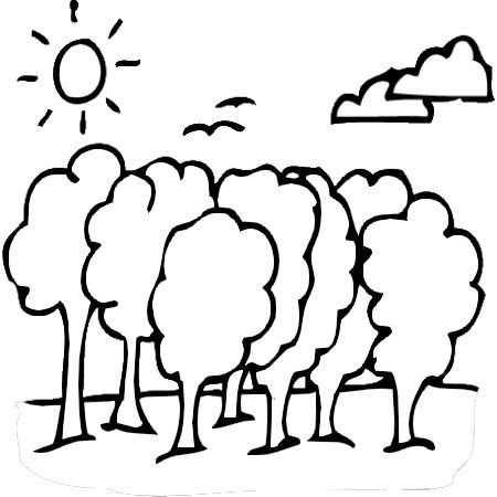 Orman Haftası Etkinlikleri 13 Okul öncesi Etkinlik Faliyetleri