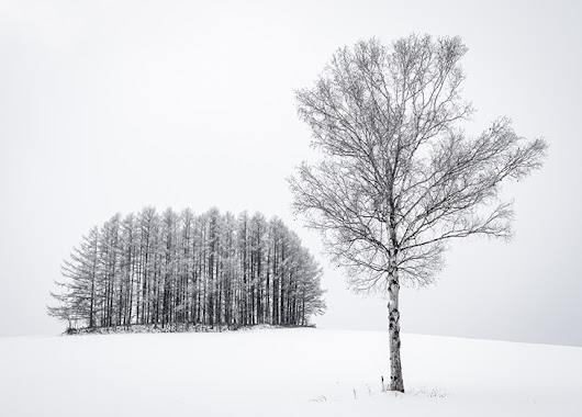 Hokkaido in Winter Workshop – A Visual Haiku