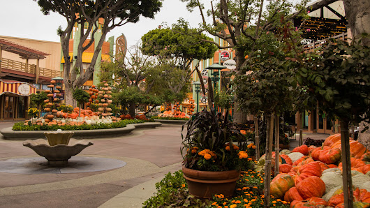 Halloween Time Surprises in Downtown Disney District at the Disneyland Resort