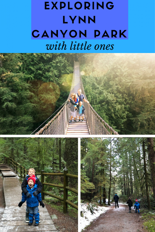 Exploring the Lynn Canyon Suspension Bridge and Park