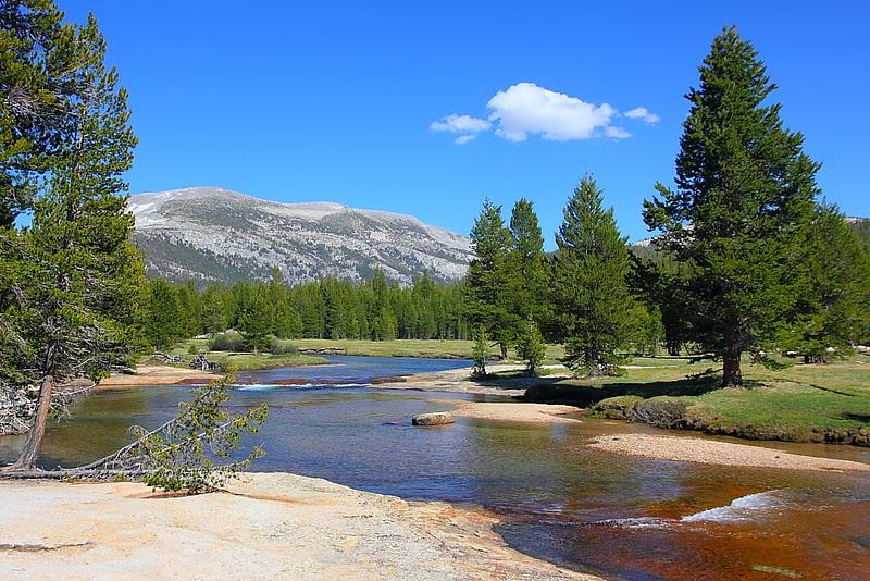 IMG_7549 Lyell Fork of the Tuolumne River, Yosemite National Park