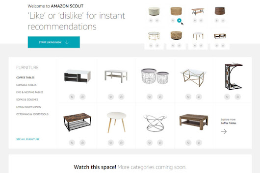 Amazon Scout machine learning shopping experience