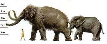 Resultado de imagen para el mastodonte