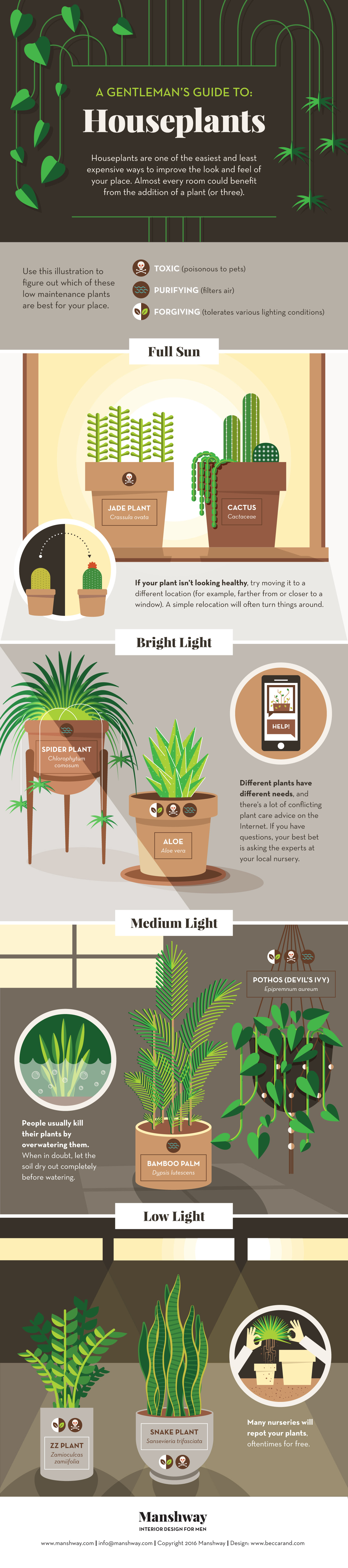 A Gentleman's Guide to Houseplants