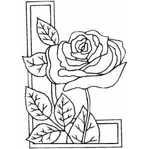 Floral Border Designs To Draw