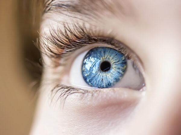 Resultado de imagem para Olhos azuis fotos
