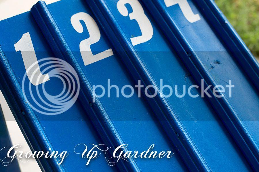 photo racetrack1-12.jpg