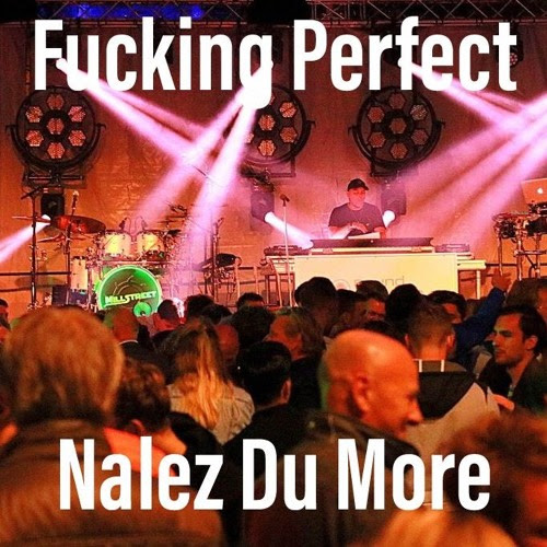 F*cking Perfect Pink - Nalez Du More Moombahton Bootleg by Dj Con NaLez - Project Nalez Du More