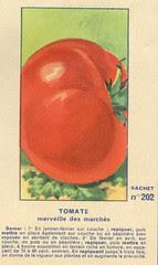 legume202 tomate