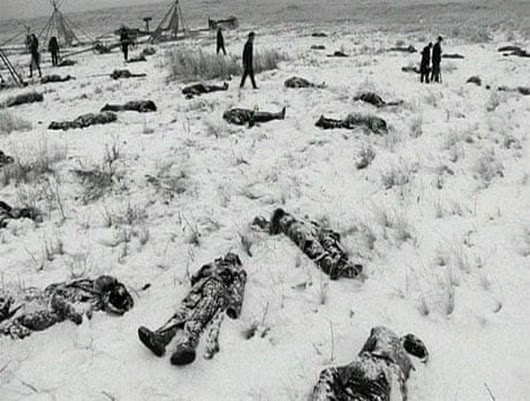 The Wounded Knee medals of honor should be rescinded | Dana Lone Hill | Comment is free | The Guardian