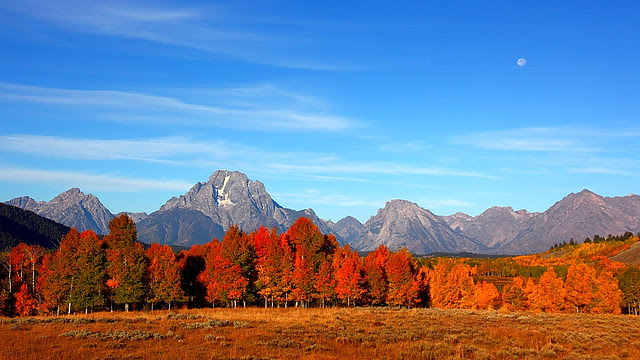 IMG_8549 Autumn Delight, Grand Teton National Park
