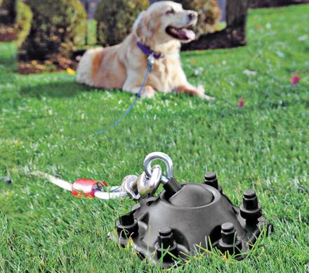 SURESwivel: A Tangle Free Dog Tether That Swivels