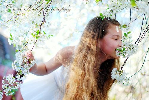 dream girl of spring