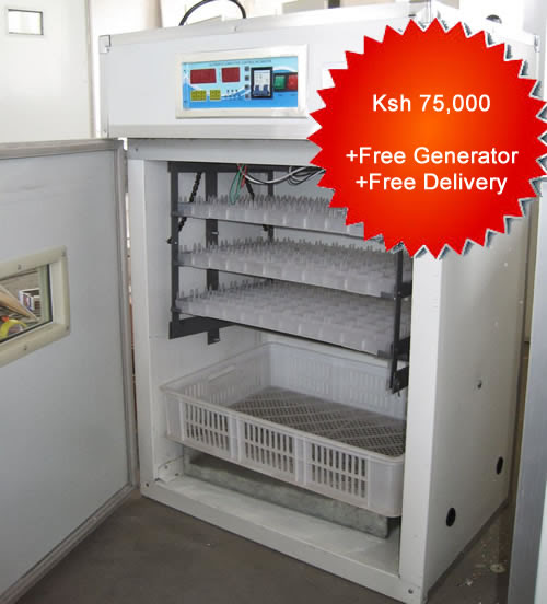 528 Chicken eggs incubator