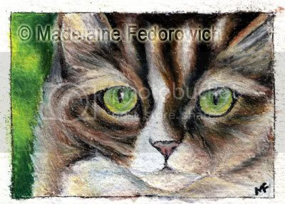 Green Eyes Cat ACEO