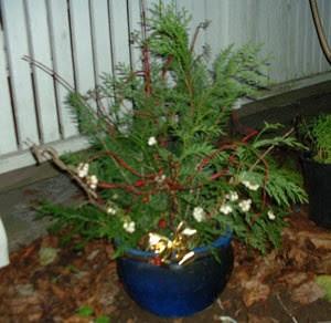 Homemade Outdoor Christmas Decorations   ThriftyFun