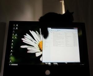 Big-Screen-Cat-Ornament
