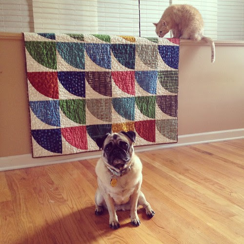 Snowdrift Quilt (and company)
