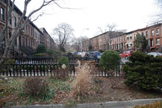Carroll Gardens Street Shot