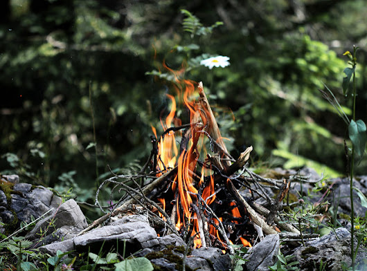 Optimize Your Campfire Based on Firewood BTUs | OutdoorHub