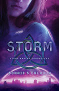 Title: Storm (Stone Braide Chronicles Book #3): A Novel, Author: Bonnie S. Calhoun