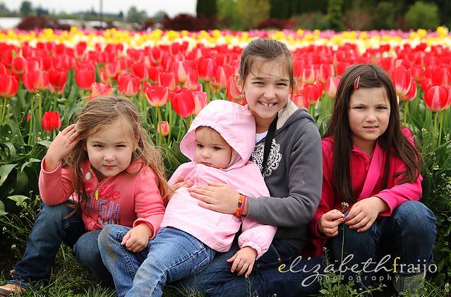 Tulips11W