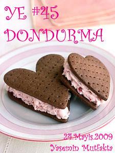 YE #45 Dondurma