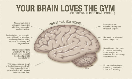 Exercise, Aging and the Brain