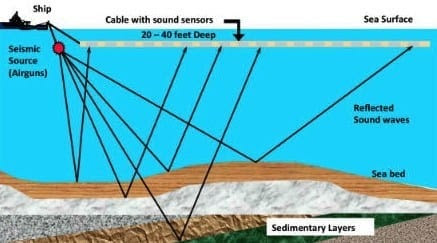 Offshore drilling: What's all the noise about seismic surveying?