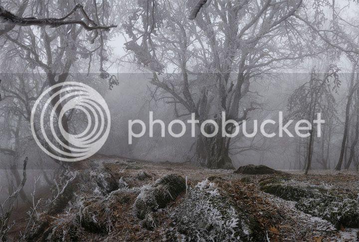 photo Alexander-Shatsky_zps4c4e3a3f.jpg