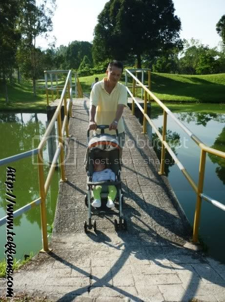 Taiping Lake Gardens,Pictures of Taiping Lake Gardens
