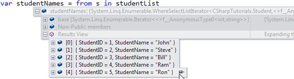 Anonymous Type in debug view