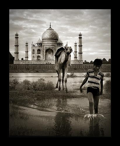 Taj Mahal (4)