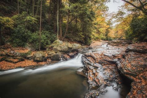 Fall in Ohiopyle State Park   Pittsburgh Photographer